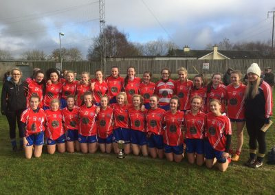 Senior Football Leinster Champions 2016